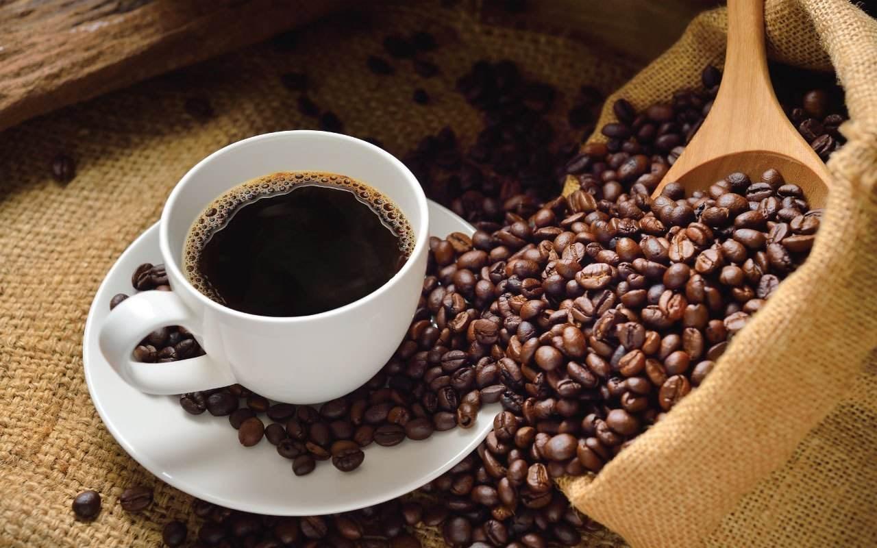 加盟猫屎咖啡需要哪些条件?流程是怎样的?