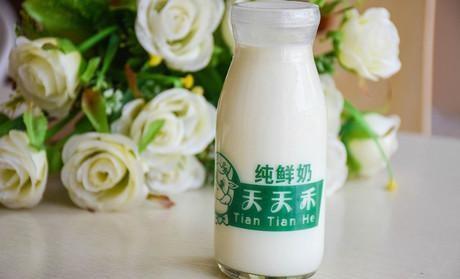 天天禾鲜奶吧